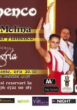 7 Ani 7 Plăceri la Daimon Club din Bucureşti