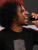 POZE: Alice in Chains la Tuborg Green Fest – Sonisphere 2010