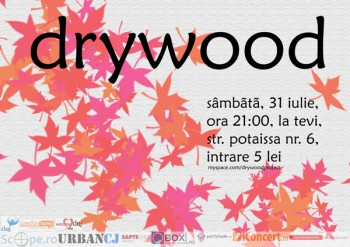 Concert Drywood în La Tevi Pub din Cluj-Napoca
