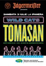 Wild Cats la Terasa Ipanera din Mamaia