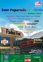 Padina Fest 2010 la Padina