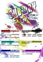 Subway Fest la Bacău