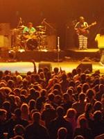 Concerte şi petreceri 16-22 septembrie 2010