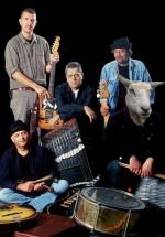 Concerte Nightlosers în România