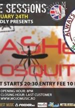 Concert Smashed Mosquito în Club Mojo din Bucureşti