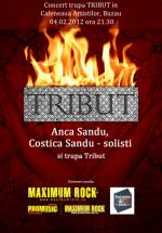 Concert Tribut în Cafeneua Artiştilor din Buzău