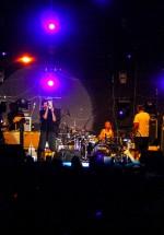 6-coma-stufstock-2012-vama-veche-13