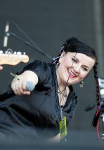 electric-fence-bestfest-2012-11