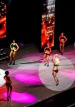 lord-of-the-dance-2012-bucharest-sala-palatului-39