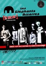 Lansare single Les Elephants Bizarres în Tête-à-Tête din Bucureşti