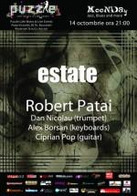 Concert Estate by Robert Patai în Club Puzzle din Bucureşti