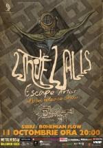"""Concert White Walls – lansare """"Escape Artist"""" în Bohemian Flow Art & Pub din Sibiu"""