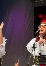 constantin-enceanu-sala-palatului-bucuresti-2014-18