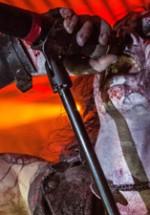 RECENZIE: Watain şi Degial au fost protagoniştii unui adevărat ritual ocult pe ritmuri black metal şi death metal (POZE)