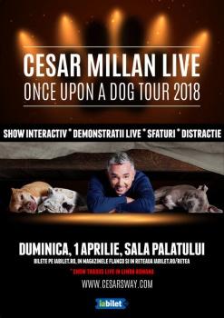 """Cesar Millan – """"Once Upon a Dog"""" la Sala Palatului din Bucureşti – ANULAT"""