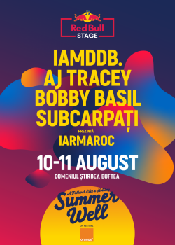 Scena Red Bull la Summer Well 2019